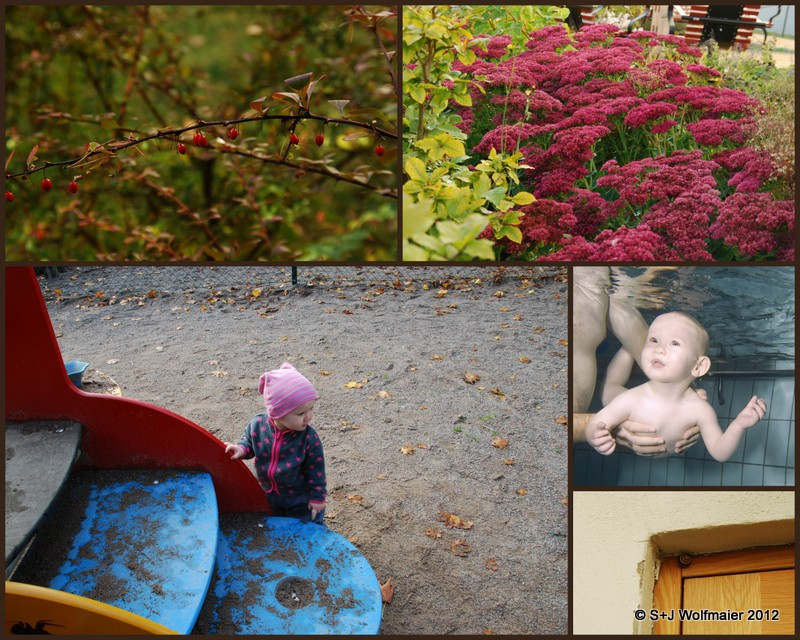 Some highlights, 5 pictures showing the autumn and our daughter